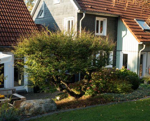 Garten in Hanglage Terrassenbau Wuppertal