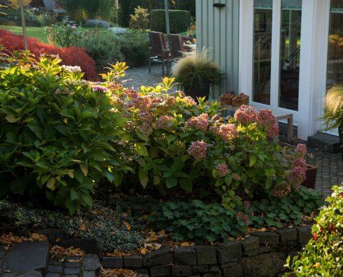 Gartenpflanzung im Hanggarten
