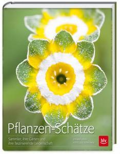 Buch Pflanzen-Schätze