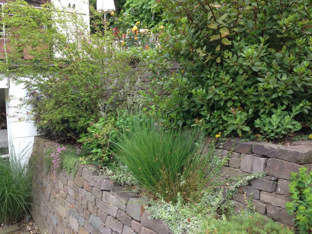 Sophisticated Hanggarten Gestalten Decoration Of Trockenmauer Mit Bepflanzung