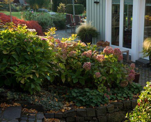 Terrasse Gartenbepflanzung