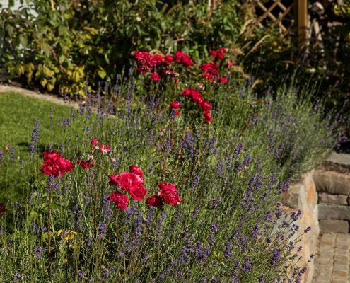 Gartenbepflanzung im Hanggarten Natursteinwand