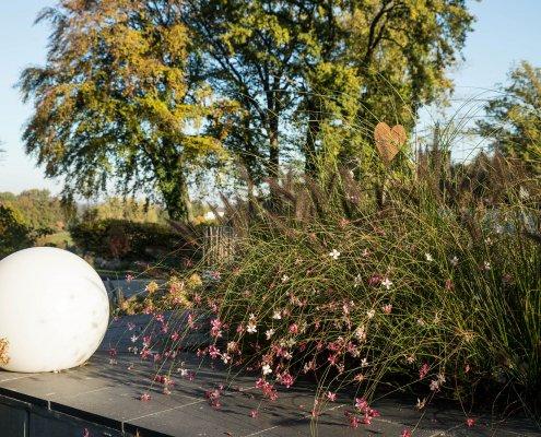 Leuchtkugel, Bepflanzung im Garten