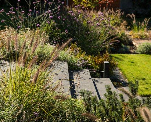 Stufen aus Beton, Gräser und Stauden im Garten