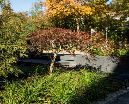 Gärten von Eckhardt Vorgarten in Wuppertal