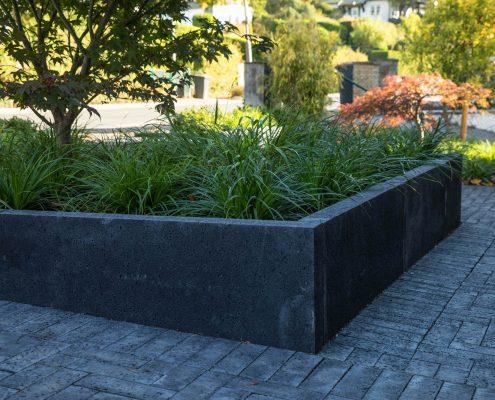 Betonelemente und Bepflanzung im Vorgarten