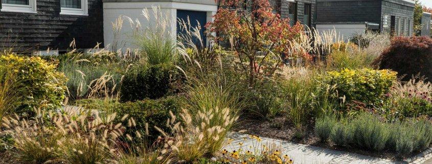 Vorgartengestaltung: Bepflanzung und Wege