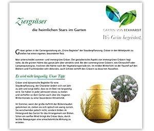 Ziergräser im Garten Planung und Pflege