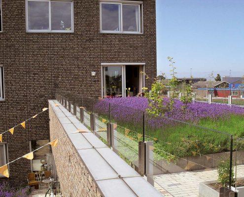 Dachterrasse mit Lavendel